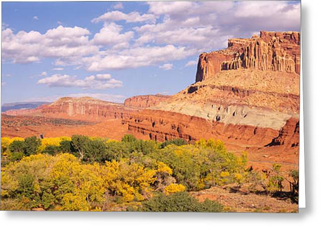 Capitol Greeting Cards - Orchards In Front Of Sandstone Cliffs Greeting Card by Panoramic Images