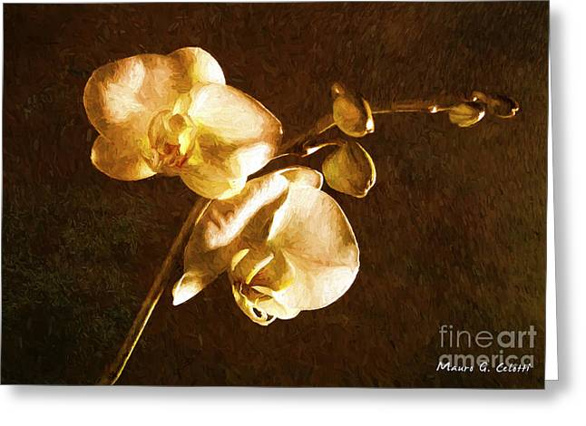 Abstract Digital Pyrography Greeting Cards - Orchid 1 Greeting Card by Mauro Celotti