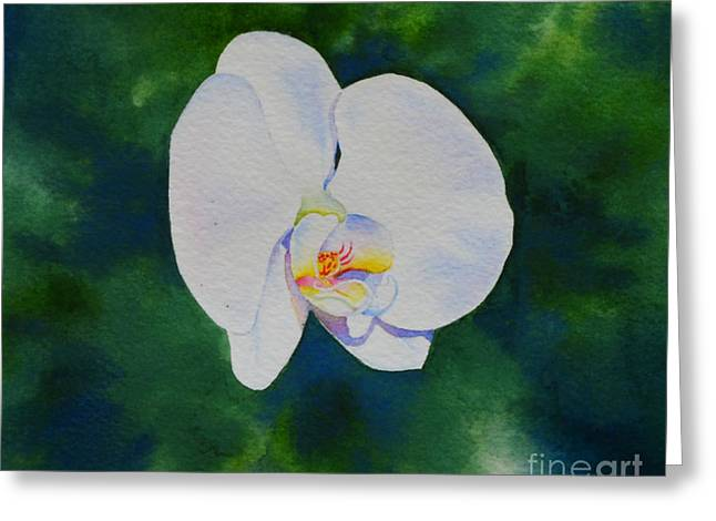 Flying Orchid Greeting Cards - Orchid Dance 3 Greeting Card by H Cooper