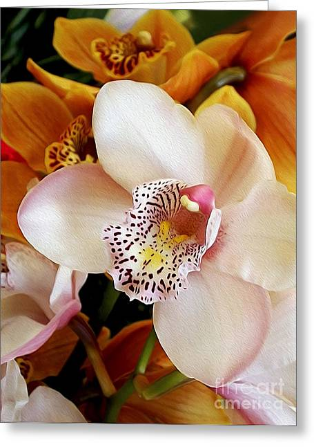 Golden Pink Orchid Greeting Cards - Orchid Delight         Greeting Card by Kaye Menner