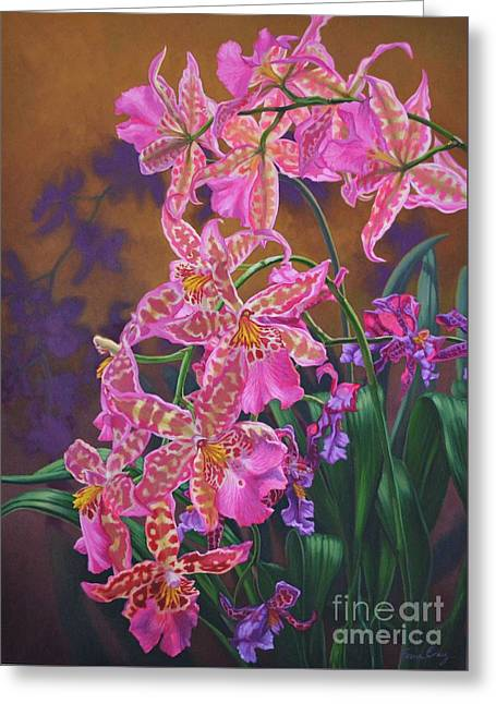 Epiphyte Greeting Cards - Orchid Fever 3 Miltonia Greeting Card by Fiona Craig