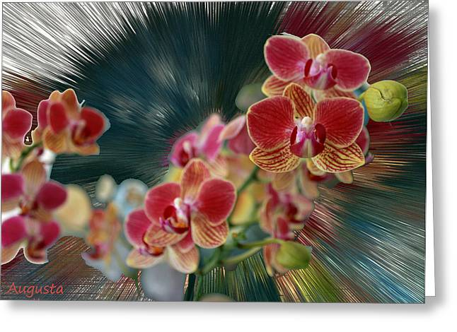 Yellow Black White Silver Greeting Cards - Orchid Flower Greeting Card by Augusta Stylianou