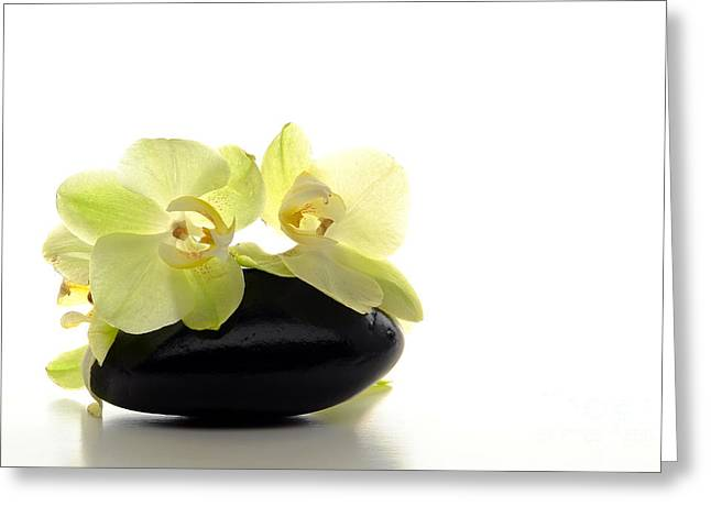 Orchid Flowers On Polished Stone Greeting Card by Olivier Le Queinec