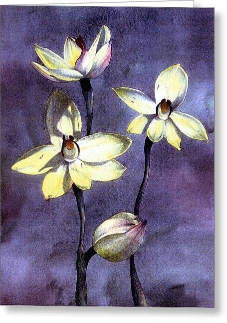 Indiana Flowers Paintings Greeting Cards - Orchid Greeting Card by John Christopher Bradley
