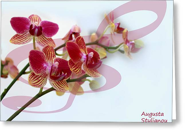 Yellow Black White Silver Greeting Cards - Orchid Music Greeting Card by Augusta Stylianou