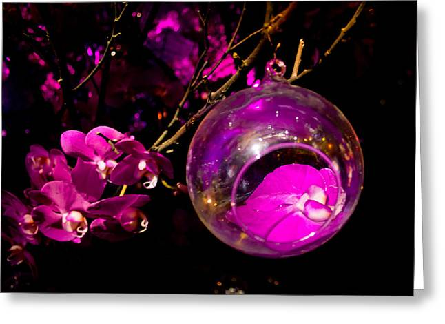 Spheres Greeting Cards - Orchid Ornament Greeting Card by Nadya Ost