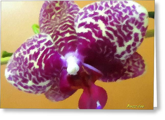 Oil Like Digital Greeting Cards - ORCHID White and Violet I Greeting Card by Buzz  Coe