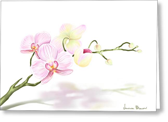 Flowers Digital Art Greeting Cards - Orchidea Greeting Card by Veronica Minozzi