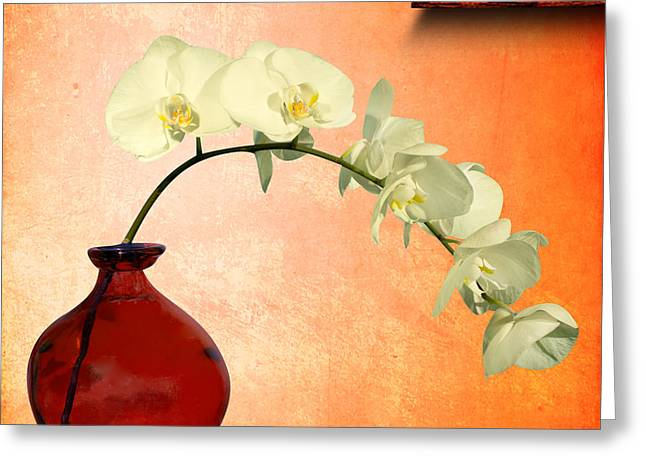 Eros Greeting Cards - Orchids 2 Greeting Card by Mark Ashkenazi
