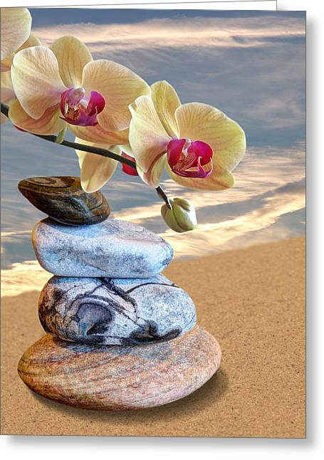 Gills Rock Greeting Cards - Orchids and Pebbles on Sand Greeting Card by Gill Billington