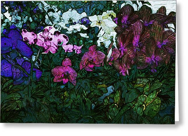 Lowes Plants Greeting Cards - Orchids at Lowes Greeting Card by Joy Jolley