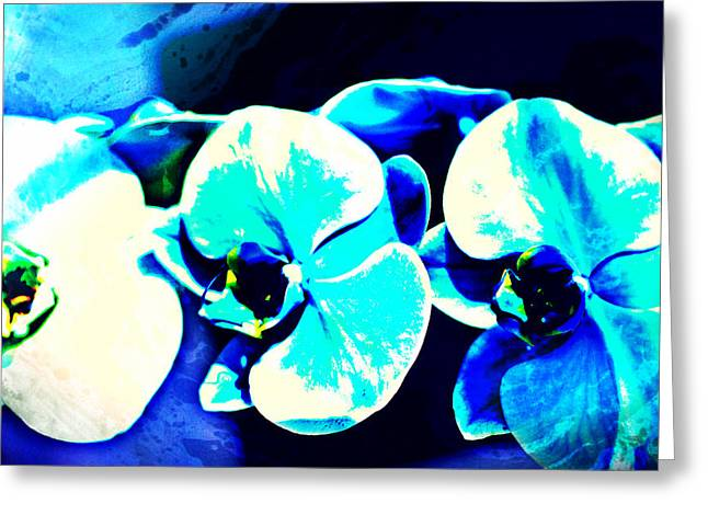 Michelle Mixed Media Greeting Cards - Orchids of Ranetta Greeting Card by Michelle Dallocchio