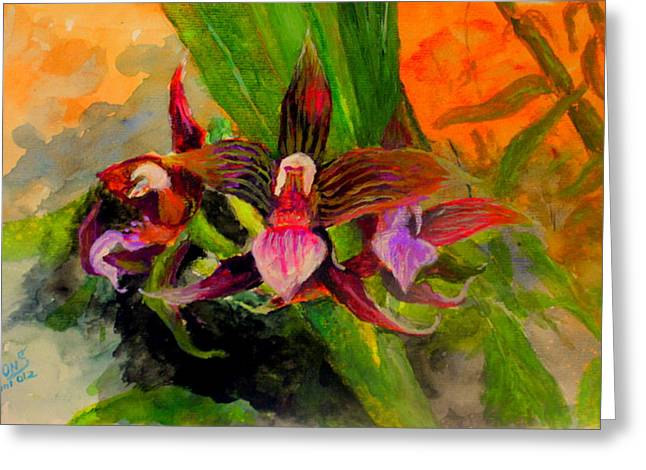 Mangrove Forest Paintings Greeting Cards - Orchiid Greeting Card by Jason Sentuf