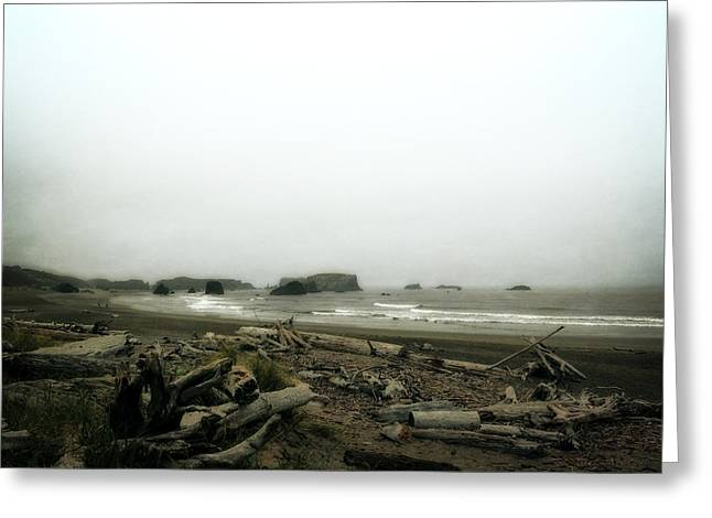 Foggy Beach Greeting Cards - Oregon Beach with Driftwood Greeting Card by Michelle Calkins