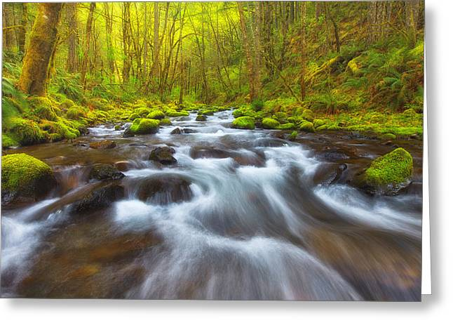 Oregon Landscapes Greeting Cards - Oregon Beauty Greeting Card by Darren  White