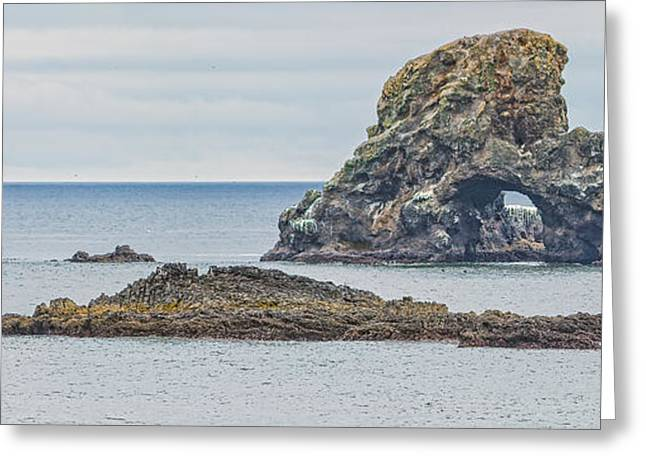 States Tapestries - Textiles Greeting Cards - Oregon Coast Ecola State Park Greeting Card by Dennis Bucklin
