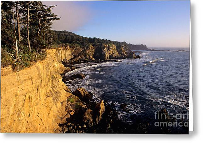 Water Worn Sandstone Greeting Cards - Oregon Coast Greeting Card by Jim Corwin