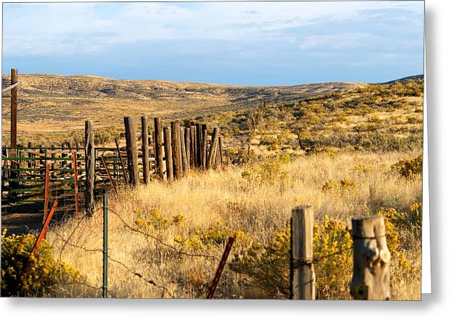 Best Sellers -  - Pastureland Greeting Cards - Oregon Corral Greeting Card by Betty LaRue