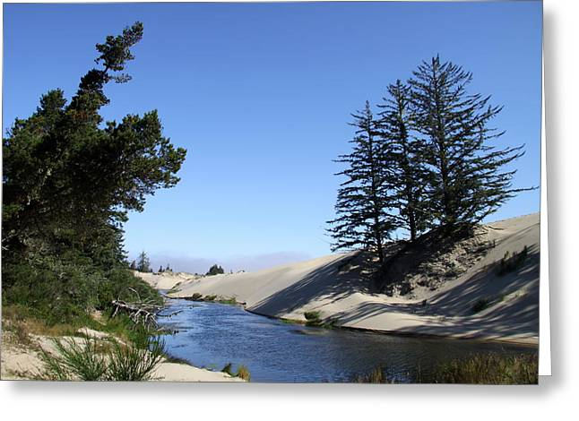 Oregon Dunes Greeting Card by Christiane Schulze Art And Photography