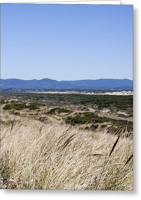 Oregon Dunes National Recreation Area Greeting Cards - Oregon Dunes National Recreation Area - 0002 Greeting Card by S and S Photo