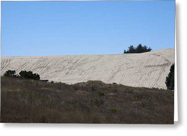 Oregon Dunes National Recreation Area Greeting Cards - Oregon Dunes National Recreation Area - 0004 Greeting Card by S and S Photo