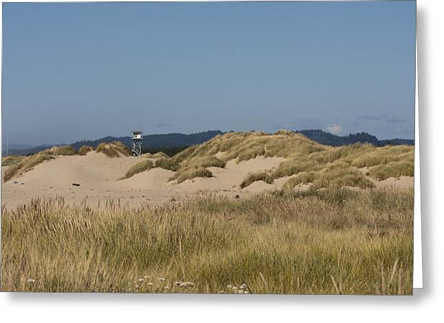 Oregon Dunes National Recreation Area Greeting Cards - Oregon Dunes National Recreation Area - 0010 Greeting Card by S and S Photo
