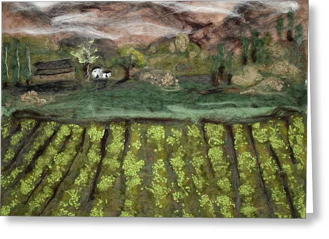 Vineyards Tapestries - Textiles Greeting Cards - Oregon Vineyard Greeting Card by Kyla Corbett