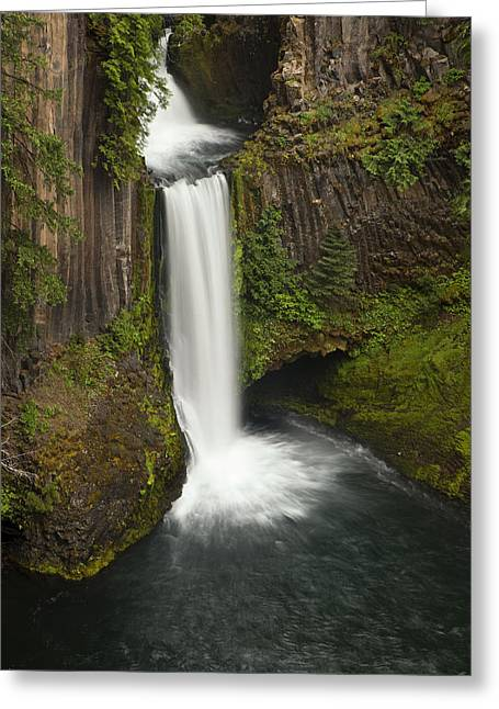 Waterfall Greeting Cards - Oregons Toketee Falls Greeting Card by Andrew Soundarajan
