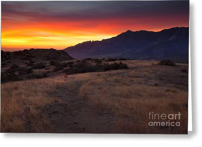 Organ Mountain Dawn Greeting Card by Mike  Dawson