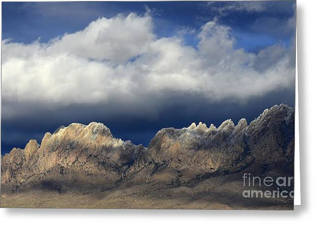 Las Cruces Landscape Greeting Cards - Organ Mountains New Mexico Greeting Card by Bob Christopher