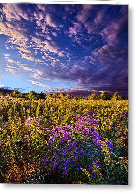Rural Art Photographs Greeting Cards - Origins Greeting Card by Phil Koch