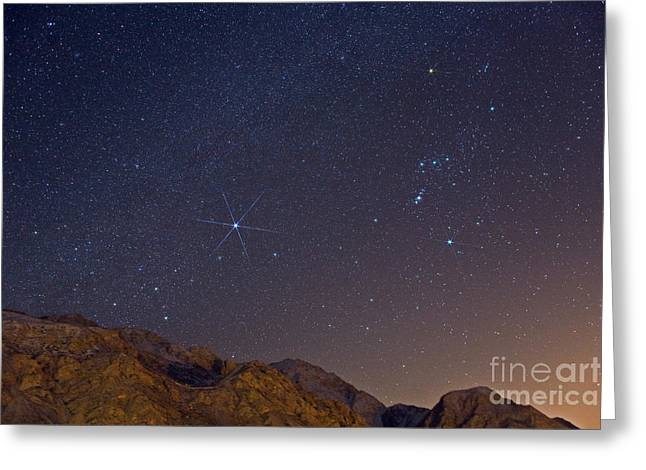 Sirius Greeting Cards - Orion And Sirius Greeting Card by Babak Tafreshi