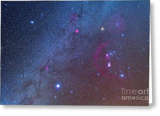 Orionis Greeting Cards - Orion And The Winter Triangle Stars Greeting Card by Alan Dyer