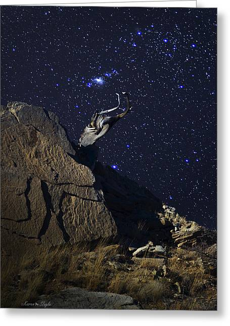 Gnarly Greeting Cards - Orion Rising Over Palo Duro Canyon Greeting Card by Karen Slagle