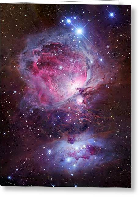 Horsehead Greeting Cards - Orion Sword Greeting Card by Celestial Images