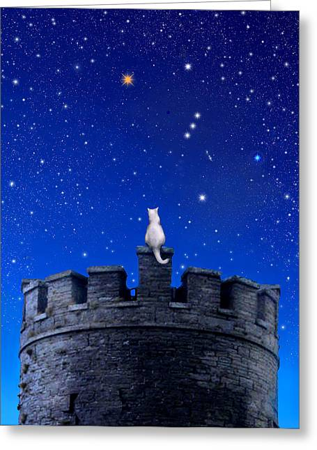 Orion Watch Greeting Card by Kathleen Horner