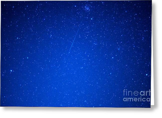 Meteor Shower Greeting Cards - Orionid Meteor Shower Greeting Card by Thomas R Fletcher