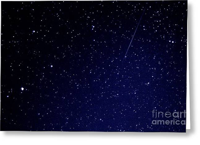 Meteor Shower Greeting Cards - Orionid Meteor  Greeting Card by Thomas R Fletcher