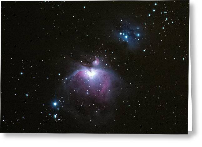 Constellations Greeting Cards - Orions Sword In The Winter Sky Greeting Card by Mike Berenson