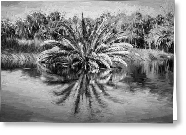 Paradise Road Greeting Cards - Ormond Scenic Loop Florida Palm Tree Painted BW Greeting Card by Rich Franco