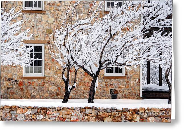 Stone House Greeting Cards - Ornate Historic Stone House in Winter Greeting Card by Gary Whitton