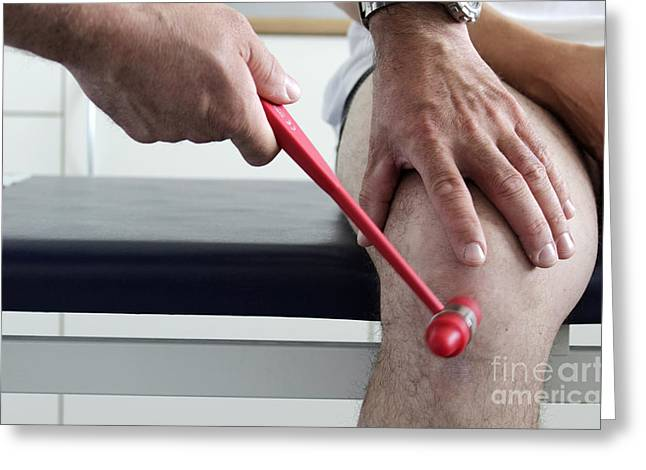 Reflex Greeting Cards - Orthopedist Examines A Patients Knee Greeting Card by Sigrid Gombert