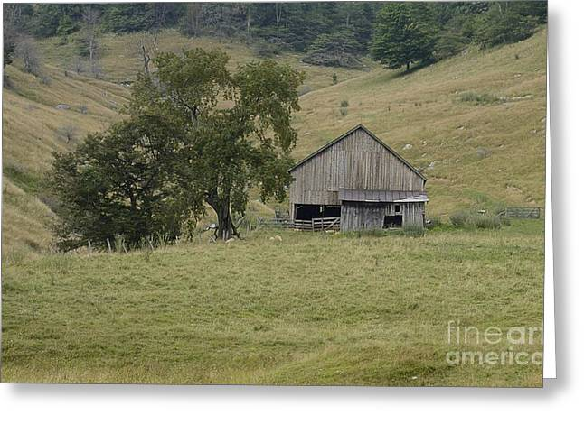 Randolph County Wv Greeting Cards - Osceola Barn Greeting Card by Randy Bodkins