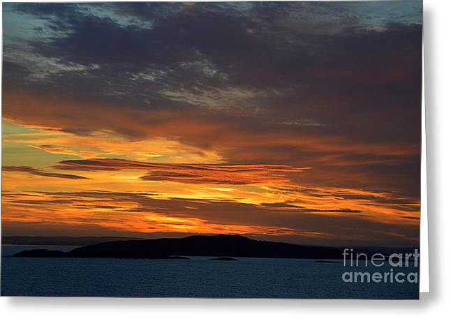 Norwegian Sunset Greeting Cards - Oslo Fjord at Sunset Greeting Card by Catherine Sherman