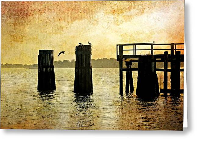 Pier Pilings Greeting Cards - Osprey Greeting Card by Diana Angstadt