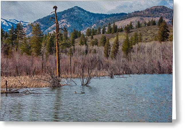 Osprey Nest In A Beaver Pond Greeting Card by Omaste Witkowski