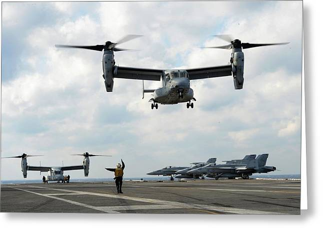 Military Might Greeting Cards - Osprey on the Deck Greeting Card by Mountain Dreams
