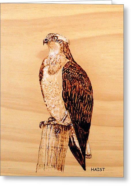 Osprey Pyrography Greeting Cards - Osprey Greeting Card by Ron Haist