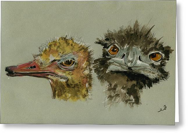 Ostrichs Head Study Greeting Card by Juan  Bosco