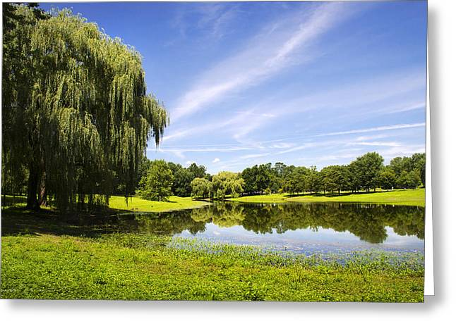 Willow Lake Greeting Cards - Otsiningo Park Reflection Landscape Greeting Card by Christina Rollo